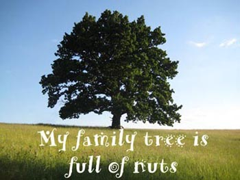 My family tree is full of nuts.